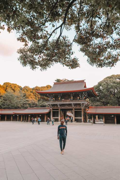 Photos And Postcards From Tokyo, Japan (20)