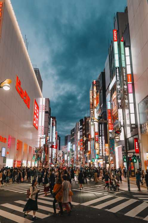 Photos And Postcards From Tokyo, Japan (22)