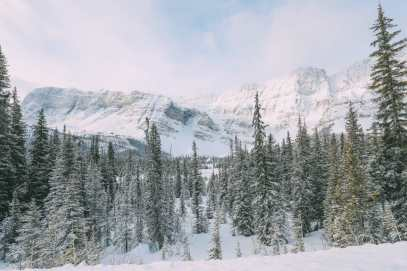Driving Canada's Epic Icefields Parkway And Finding The Frozen Bubbles Of Abraham Lake (5)
