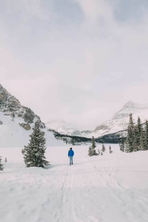 Driving Canada's Epic Icefields Parkway And Finding The Frozen Bubbles Of Abraham Lake (9)