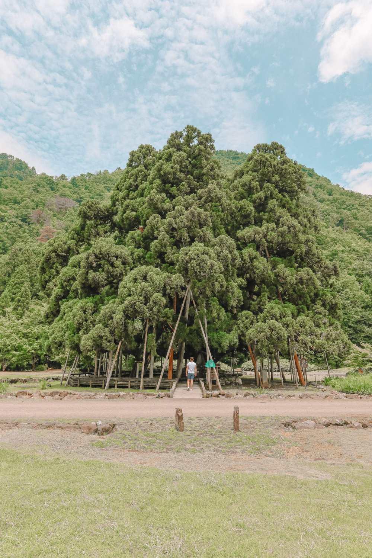 A Misogi Purification Ritual And Temples In Hakusan City - Japan (37)