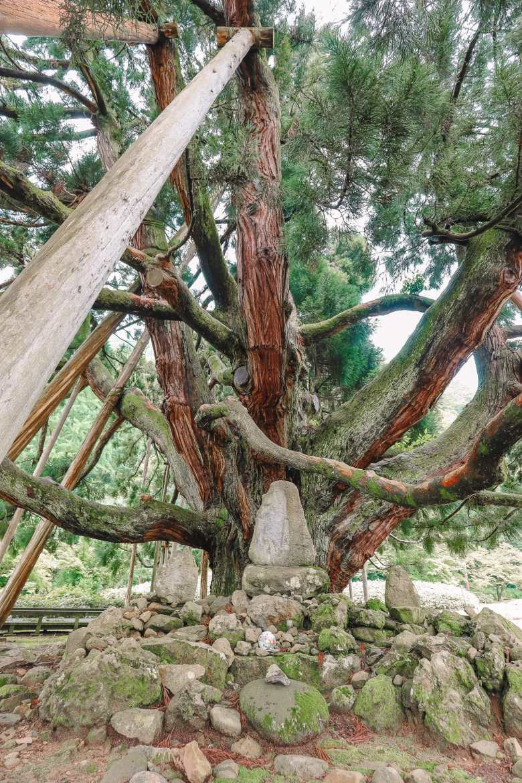 A Misogi Purification Ritual And Temples In Hakusan City - Japan (36)