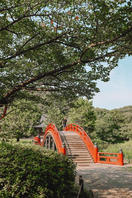 Temple Searching And Traditional Ryokans In Yokohama - Japan (17)