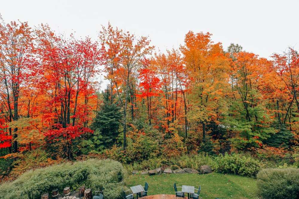 Exploring Sacacomie - Quebec's Stunning 'Hidden' Gem (8)