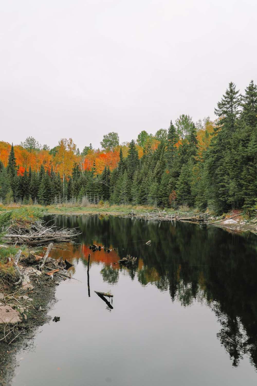 Exploring Sacacomie - Quebec's Stunning 'Hidden' Gem (42)