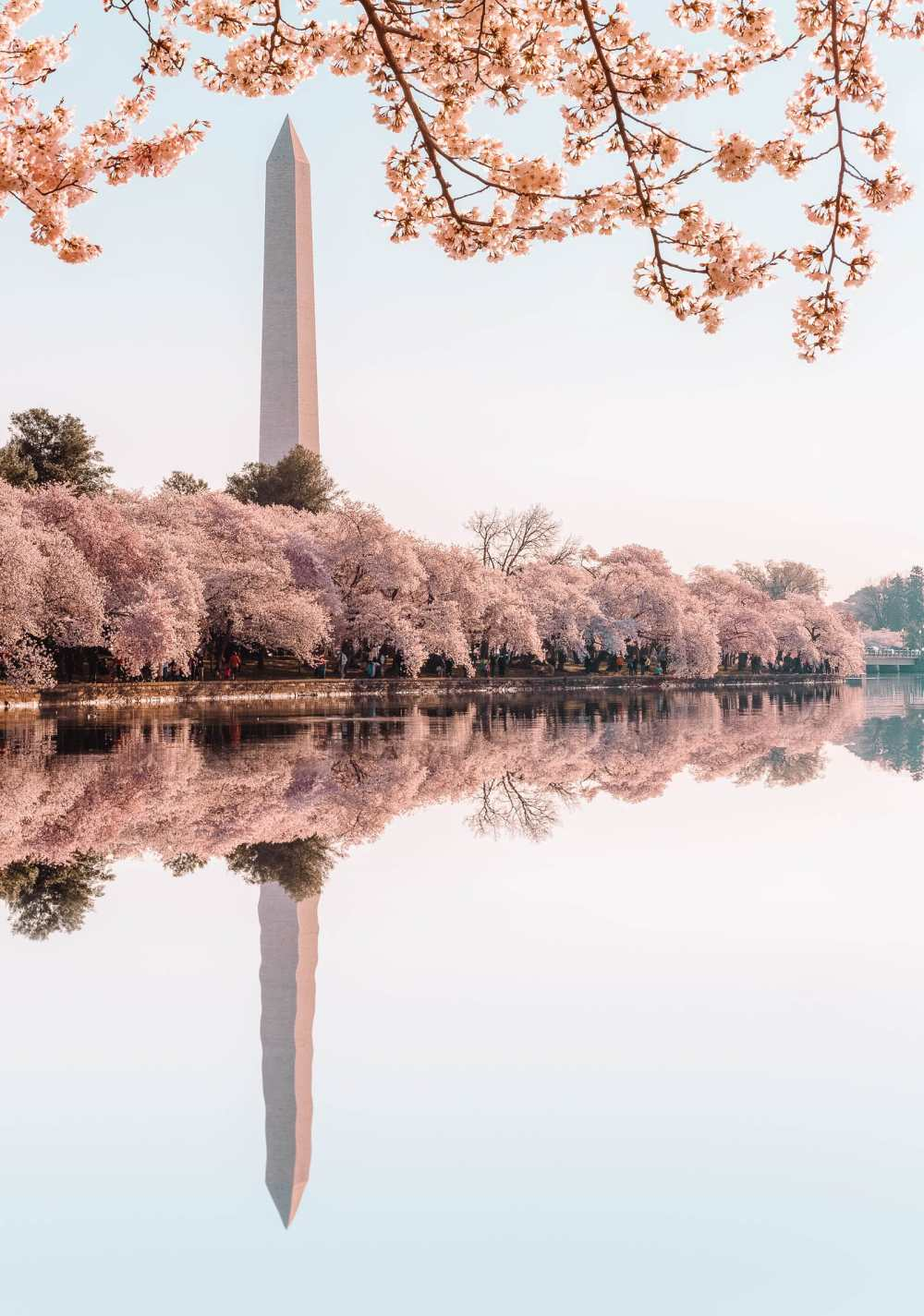 14 Best Things To Do In Washington D.C. (23)