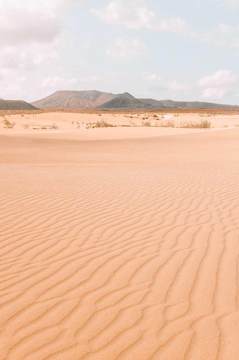 14 Best Things To Do In Fuerteventura (8)