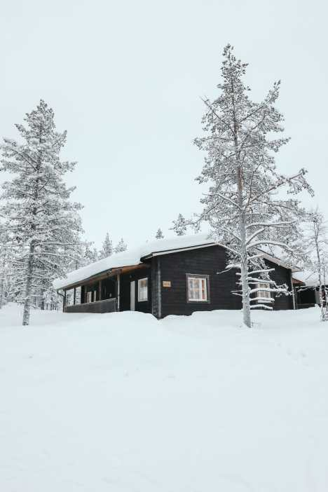 The Northern Lights Village And Star Arctic... In Lapland, Finland (1)