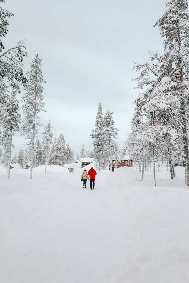The Northern Lights Village And Star Arctic... In Lapland, Finland (7)