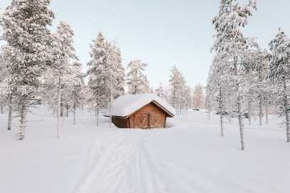 The Northern Lights Village And Star Arctic... In Lapland, Finland (25)