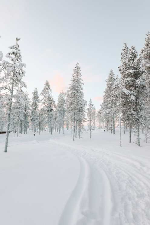 The Northern Lights Village And Star Arctic... In Lapland, Finland (26)