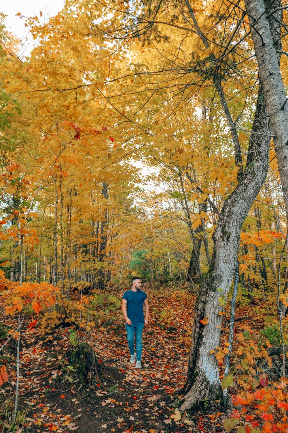 Getting Lost In Nature (And With Beavers) In Quebec, Canada (10)