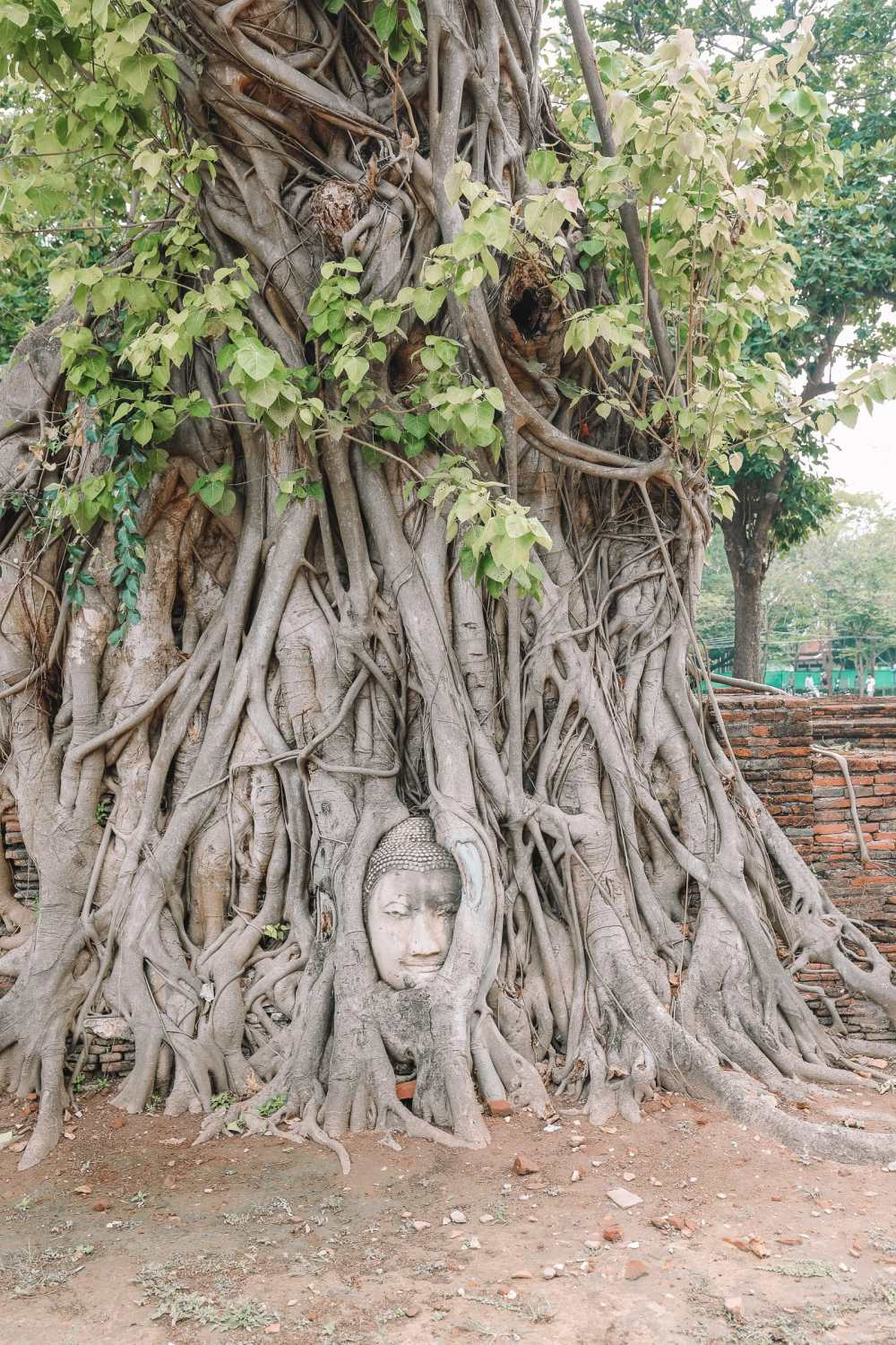 Inside The Ancient Kingdom Of Ayutthaya, Thailand (20)