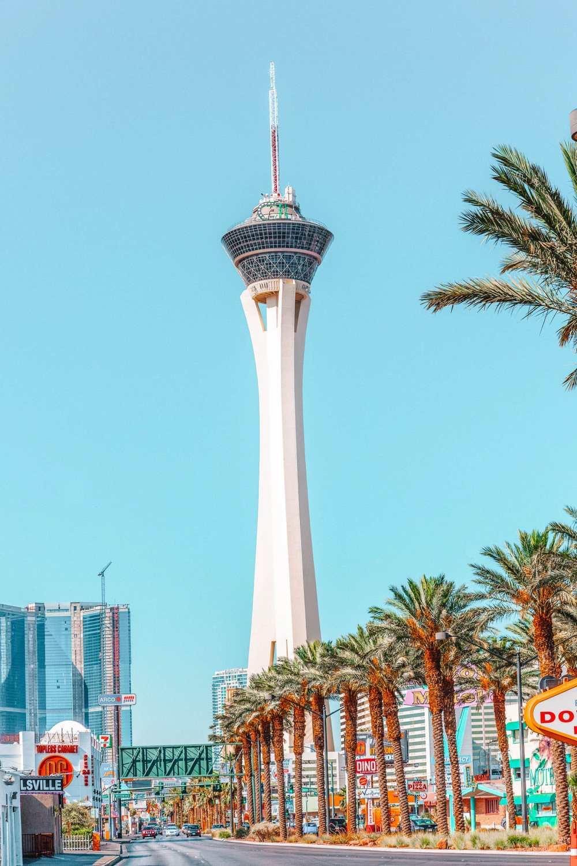 Best Things To Do In Las Vegas (9)