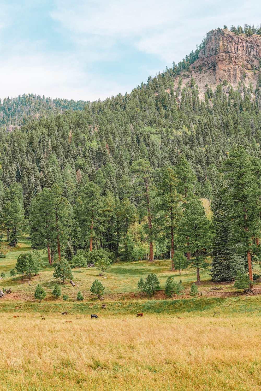 Las mejores cosas para hacer en Colorado (14)