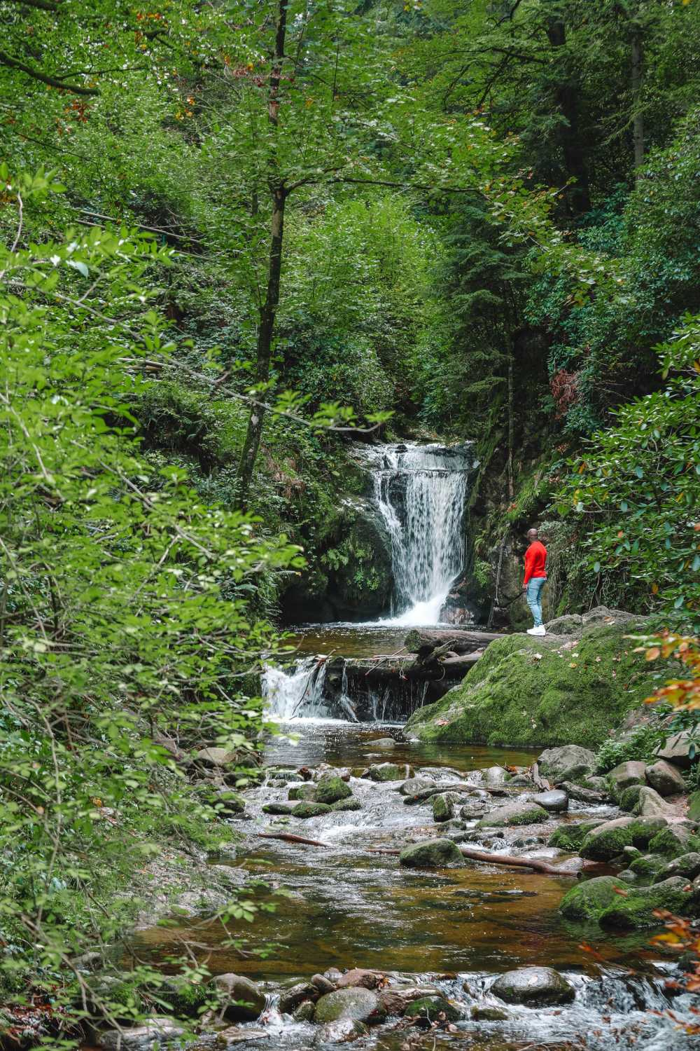 Best Things To Do In The Black Forest (27)
