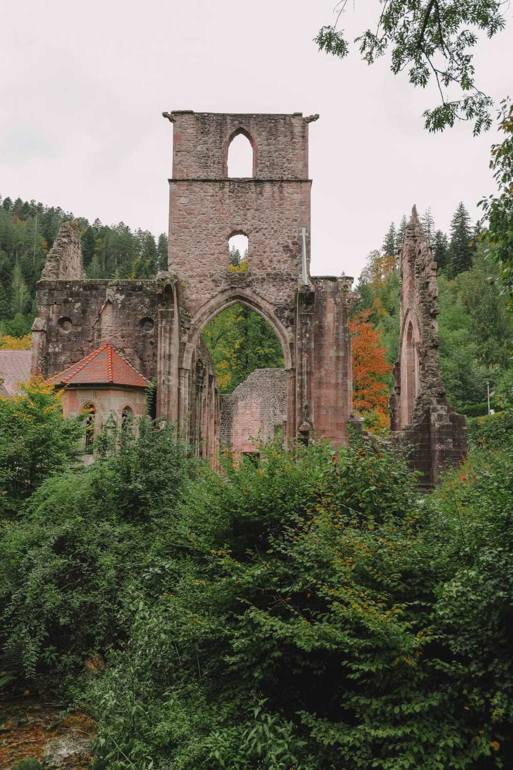 Best Things To Do In The Black Forest (41)