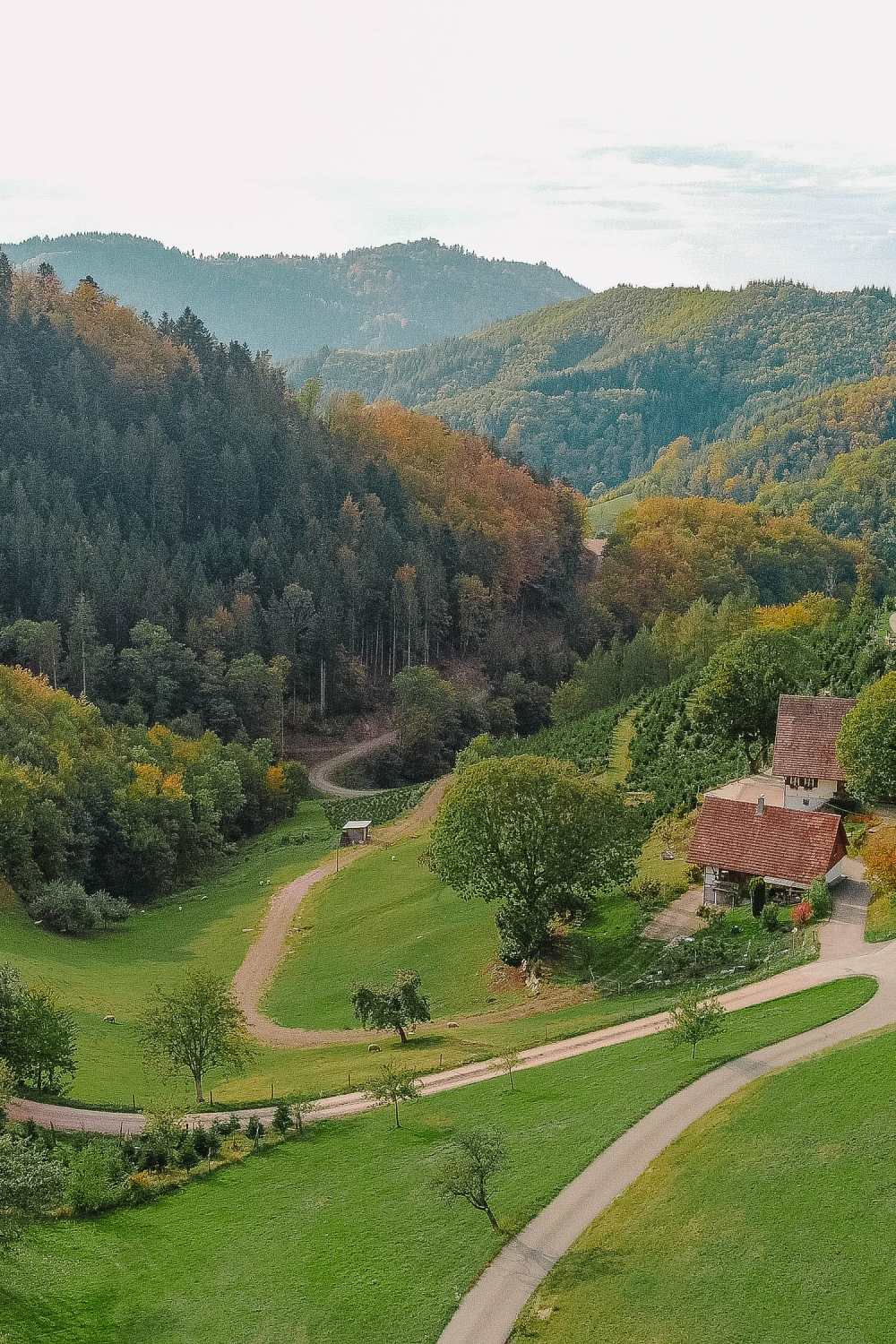 Best Things To Do In The Black Forest (28)