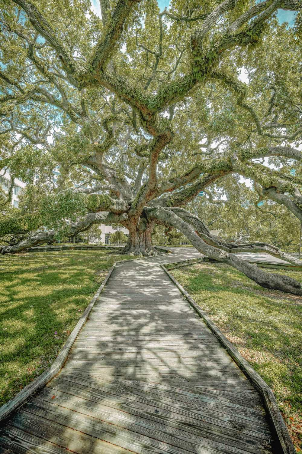 Best things to do in Jacksonville (9)