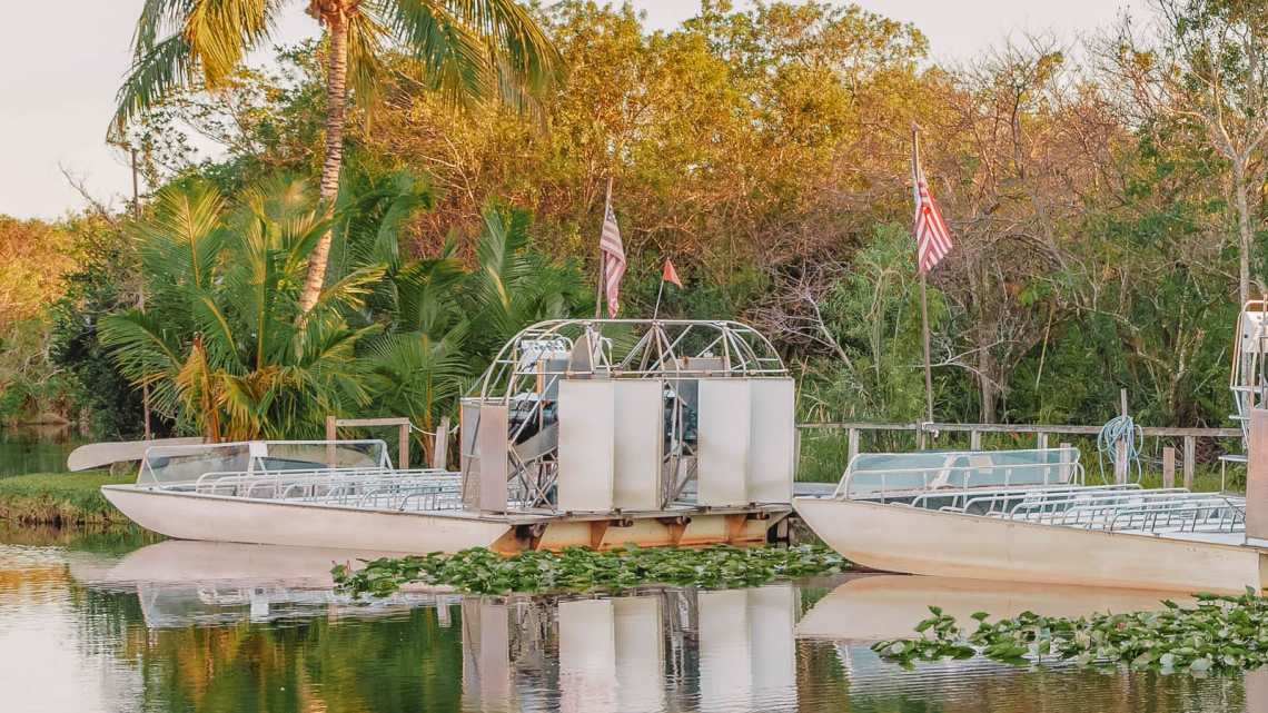 Best Things To Do In The Everglades (17)