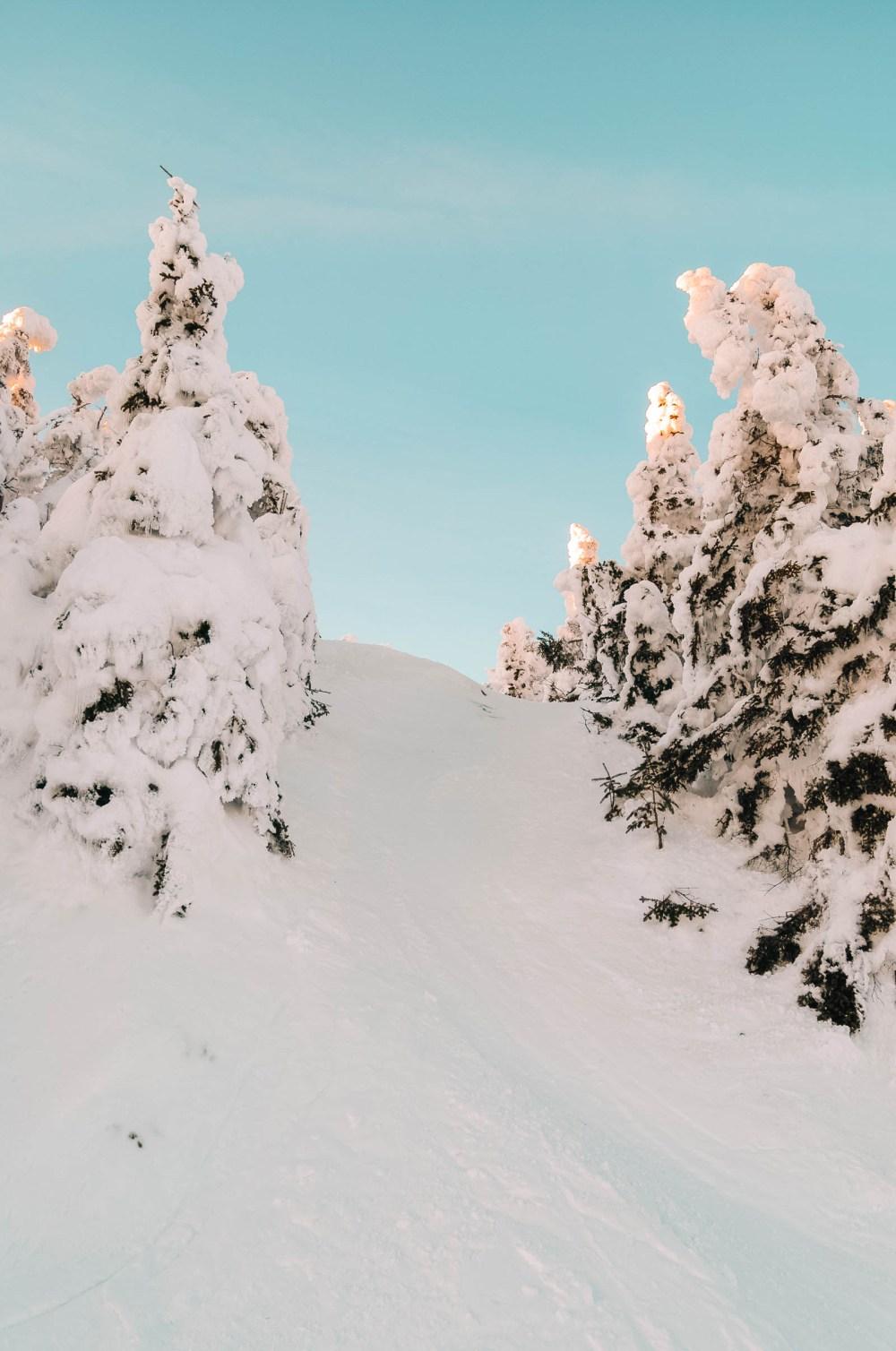 Skiing near Reno