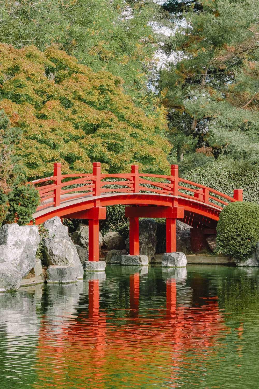 Japanese Friendship Garden In San Jose
