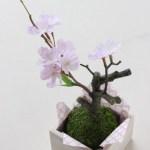 桜の盆栽を100均の造花で簡単に可愛く作る方法♪