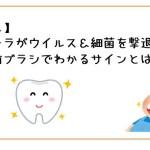 【ガッテン!】口内フローラがウイルス&細菌を撃退!あなたの歯ブラシでわかるサインとは?