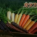 【満天青空レストラン】愛知県鈴盛農園の「7色カラフルにんじん」驚きの甘さと美味しさ!