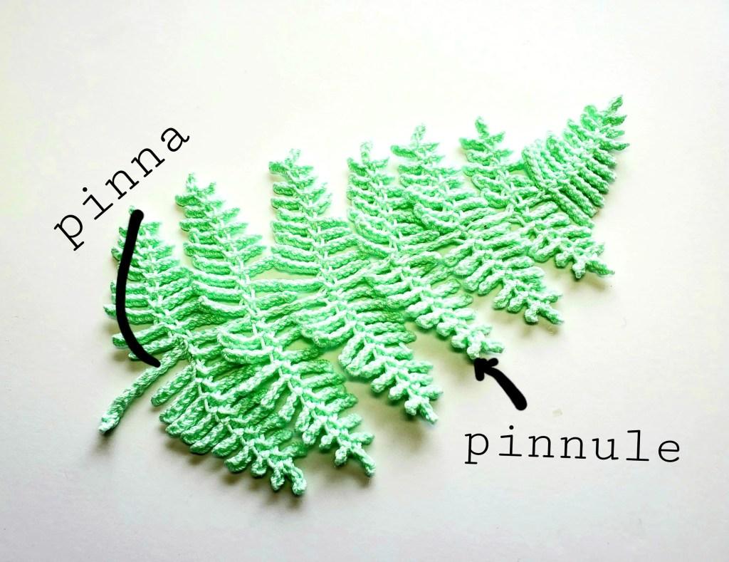 crochet fern leaf