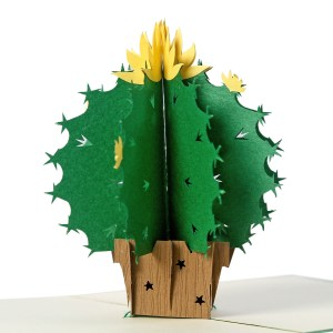Cactus 3D Pop Up Card