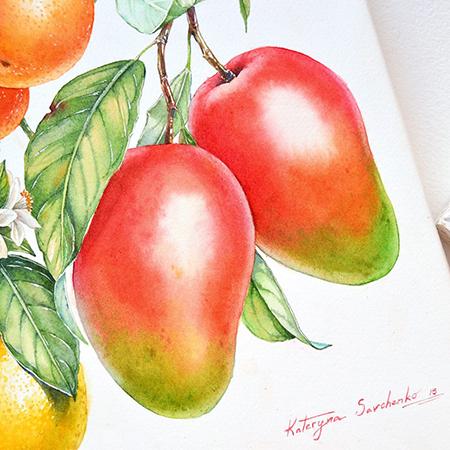 Kateryna Fruit