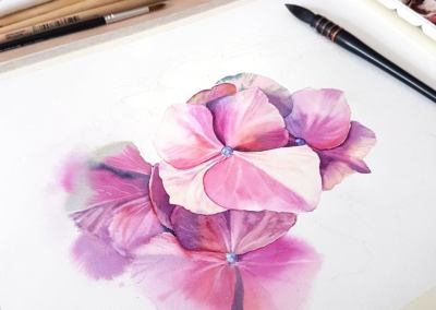 Watercolour Masterclass – Hortensia