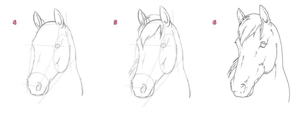 Hoe een paardportret te tekenen
