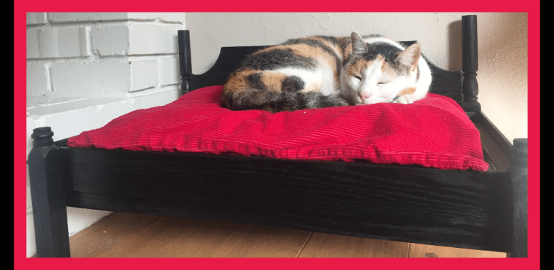 Colonial Cat Bed Daybed Style