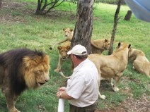 Lion whisperer Alex at Lion Park, Johannesburg