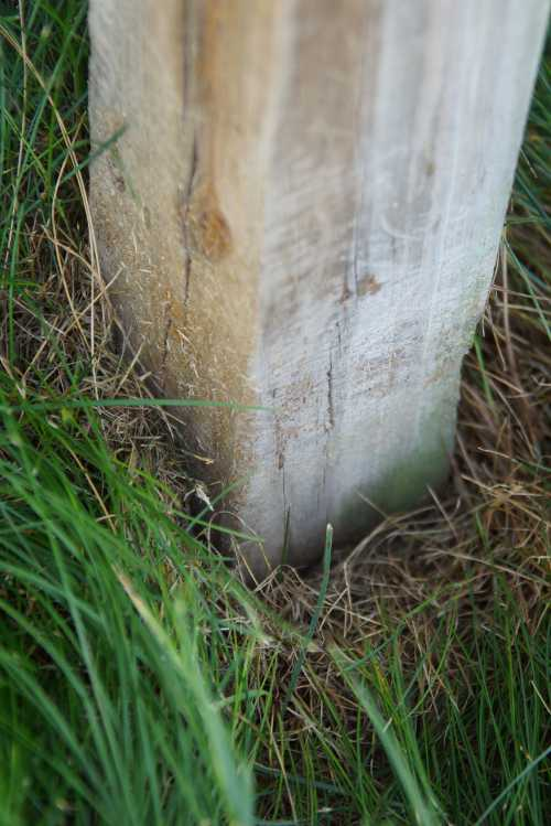 Post in ground may rot