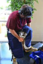 Chainsaw Safety gear