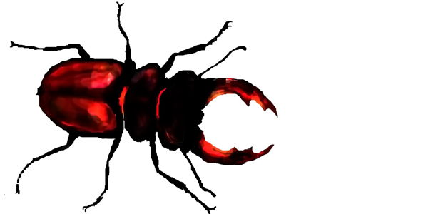 Как нарисовать жука-оленя
