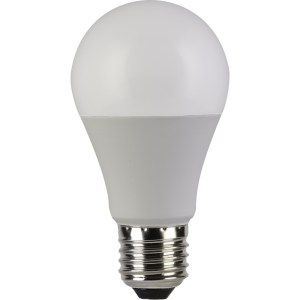 LED lamp E27 12W 2tk