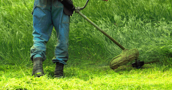 4-Cycle String Trimmers: