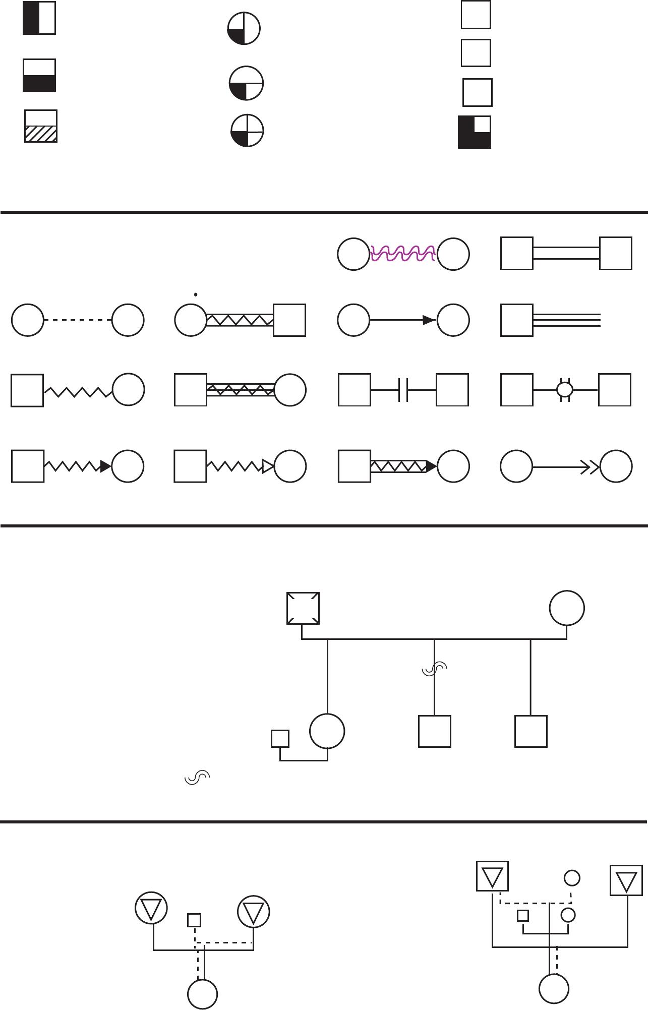 Standard Genogram Symbols Template