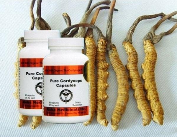 Pure Cordyceps – viên uống đông trùng hạ thảo của Mỹ