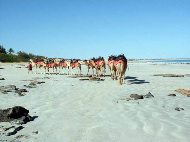 Cable_Beach,_Western_Austra