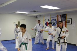 hapkido new york