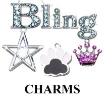 Charms for Pets