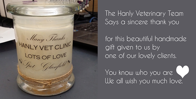 Hanly Veterinary Team thanks you