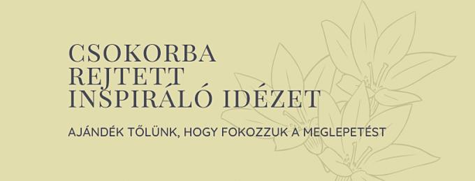 minden virágfutár szolgáltatással megrendelt csokor tartalmaz egy általunk választott inspiráló idézetet.