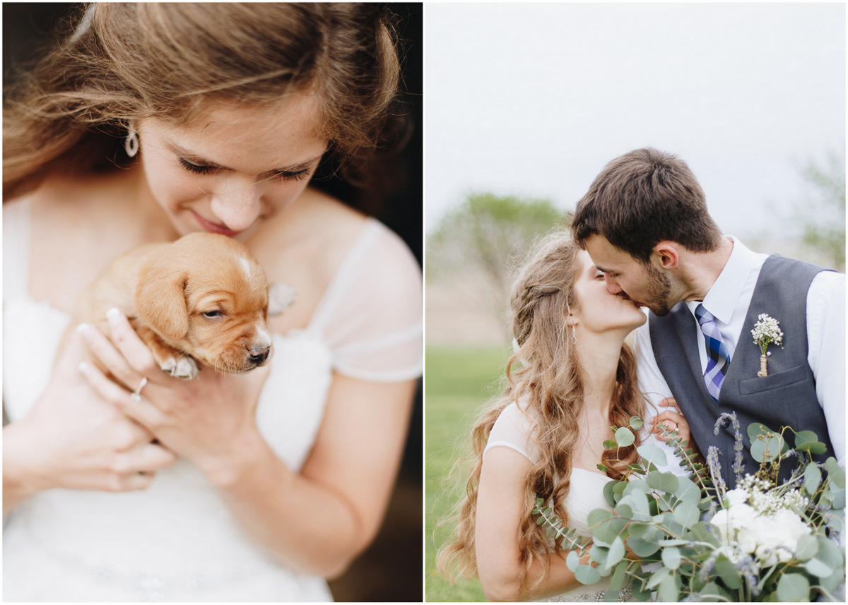 bride with a puppy, bride and groom kissing, spring wedding