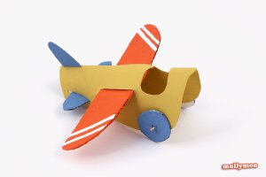 aeroplane toilet roll craft